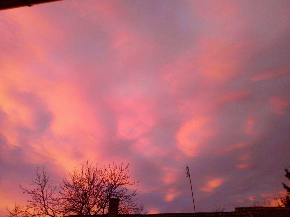 Izlazak sunca Apatin - 12. dec (Foto: Jelena Velimirović)