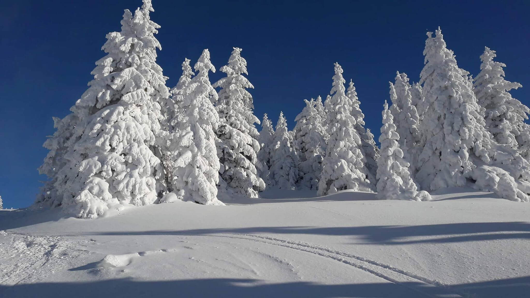 Snežna idila na Kopaoniku (2) - 21. decembar 2017