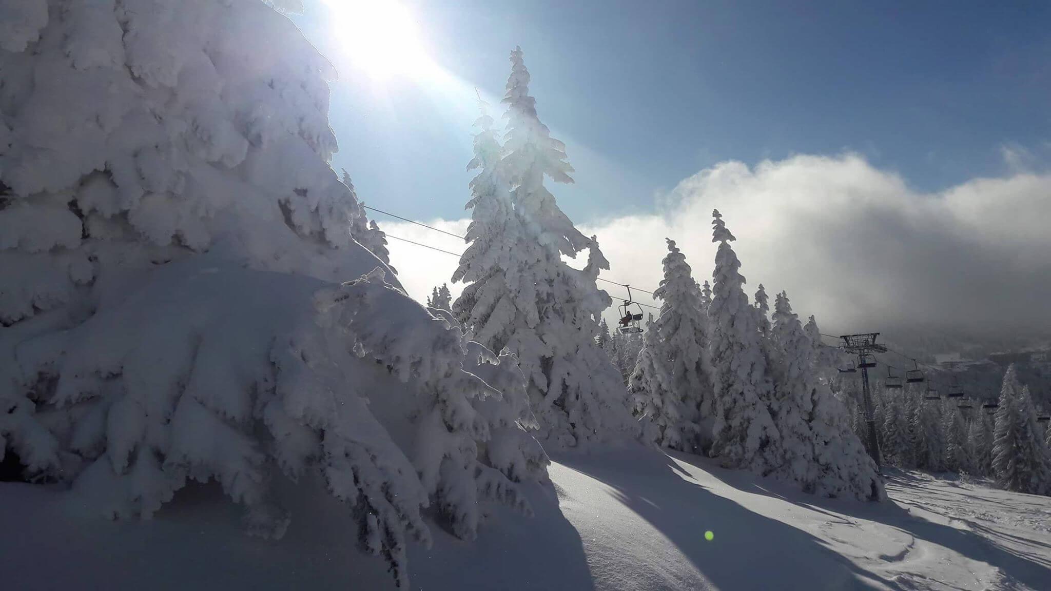 Snežna idila na Kopaoniku (4) - 21. decembar 2017