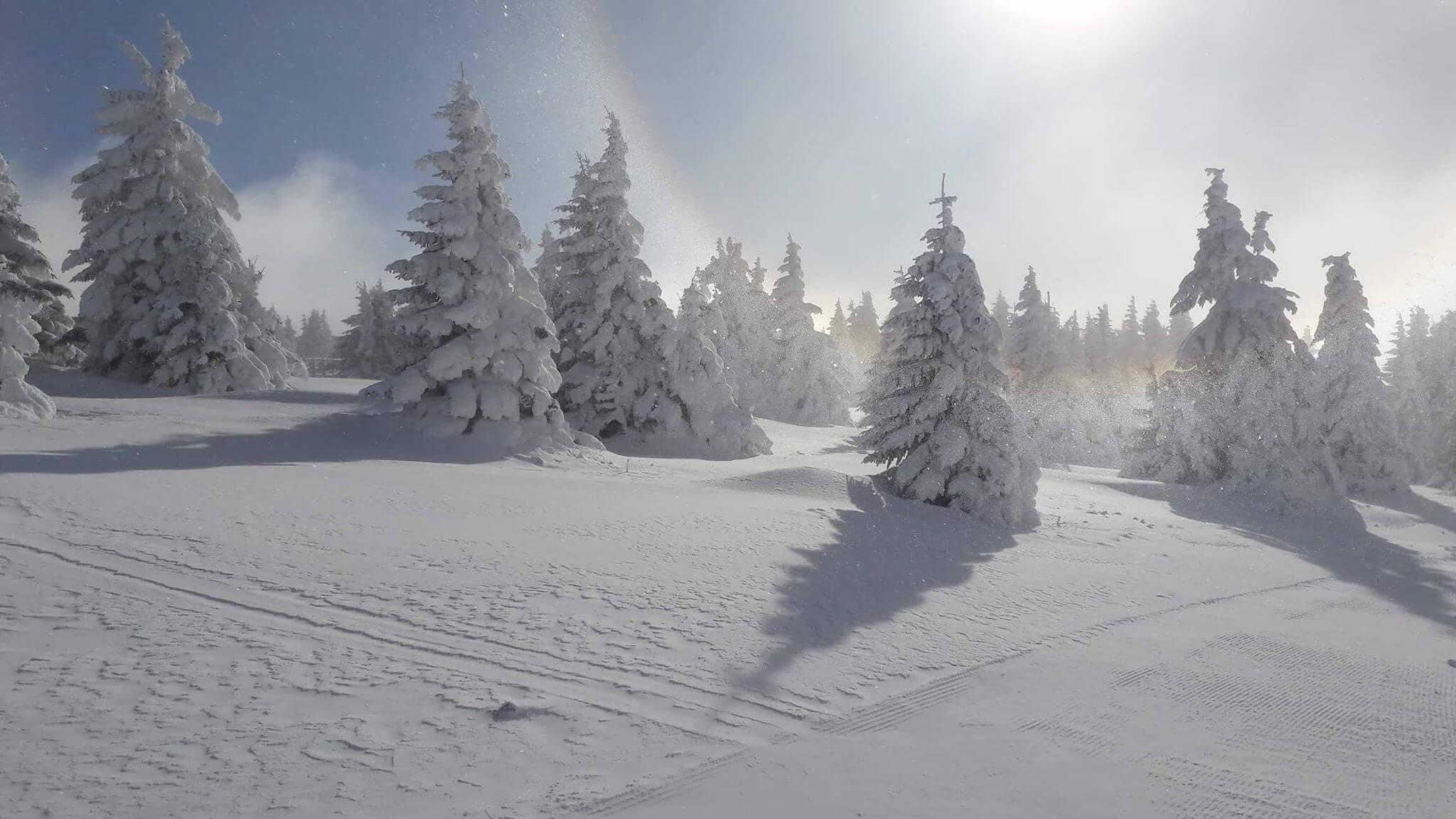 Snežni Kopaonik (2) - decembar 2017
