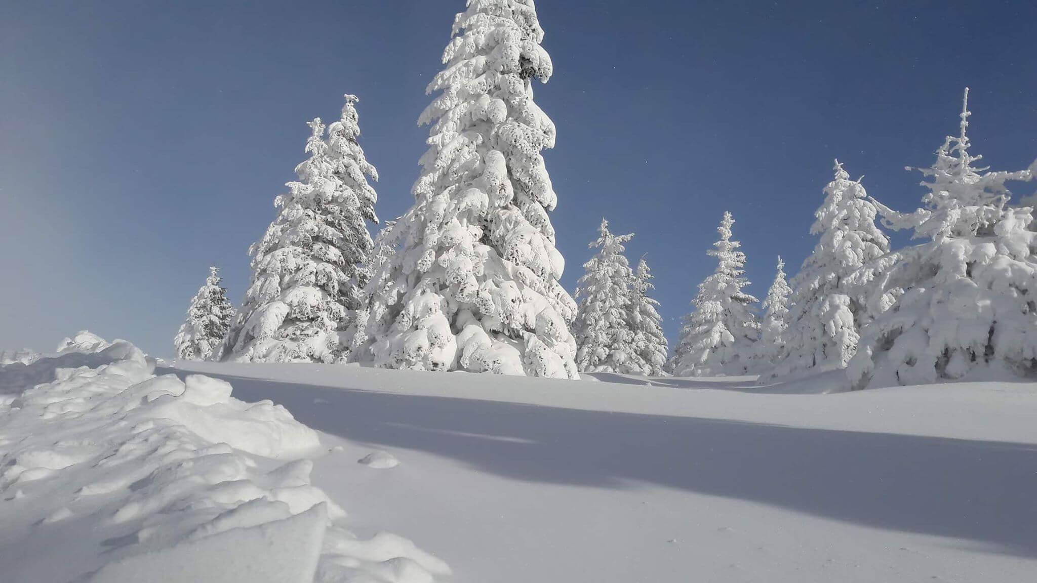 Snežni Kopaonik (3) - decembar 2017