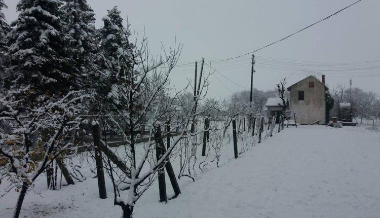 Zrenjanin - prvi sneg 3. dec