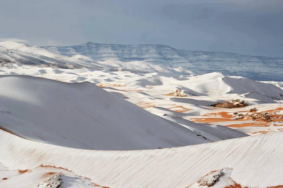 Sneg u Sahari (Alžir)