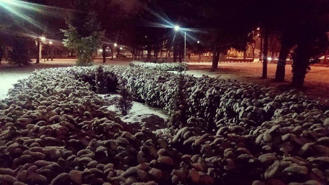 Sneg u Subotici (2) - 15. januar uveče