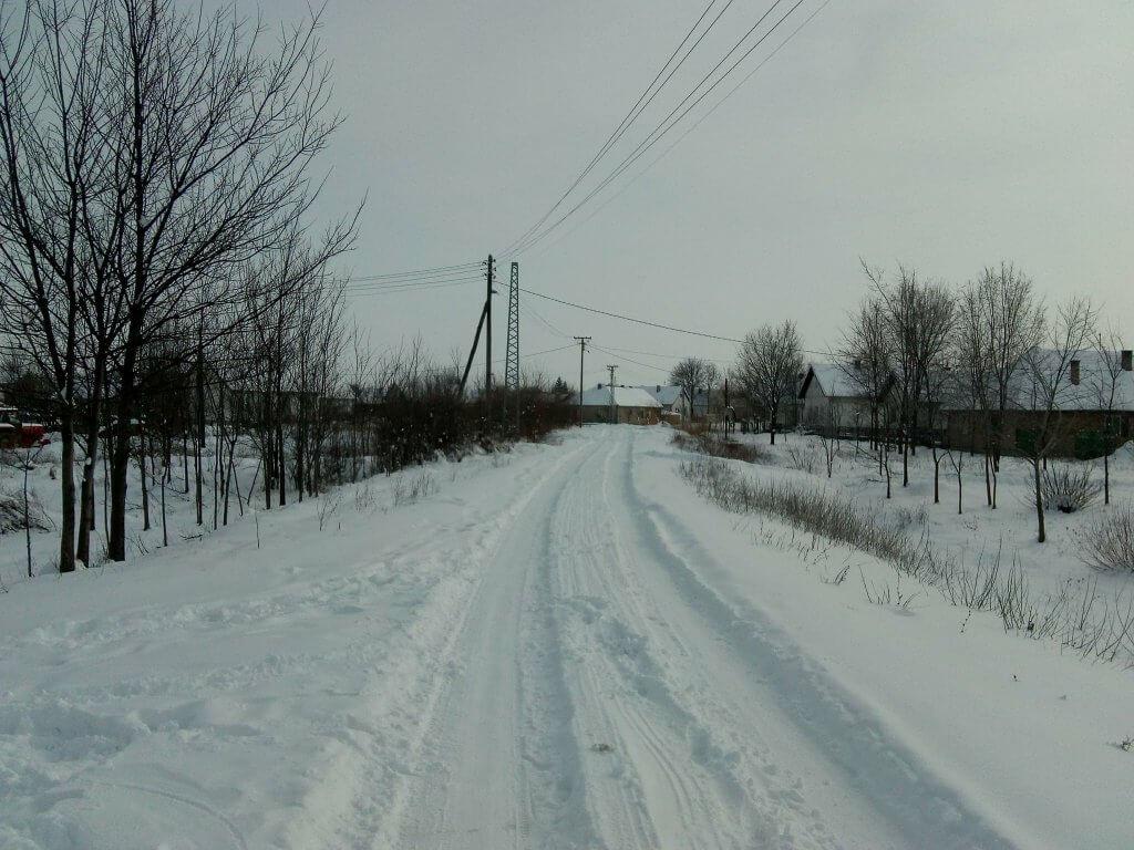 Jaša Tomić snežna idila (2) - 28. februar