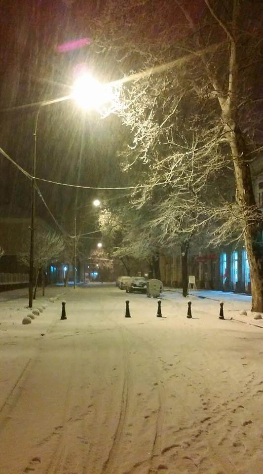 Sneg u Novom Bečeju - 20. feb 21h