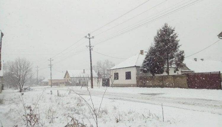 Sneg u Stanišiću (3) - 3. feb 2018