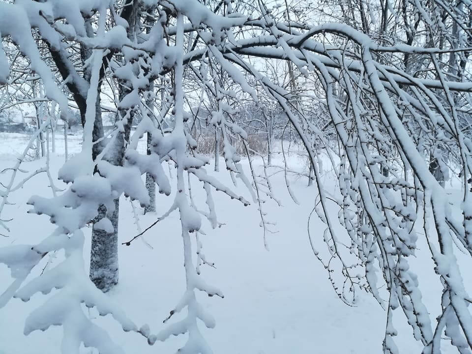 Vrbas - 21. feb ujutru