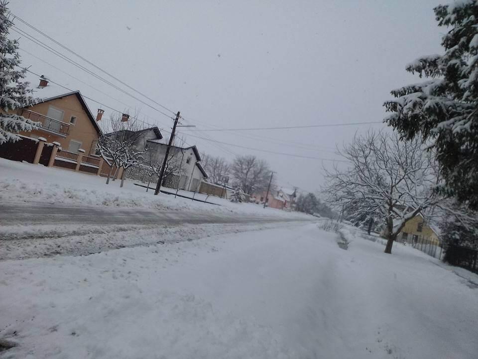 Žabalj pod snegom - 23. mart 2018