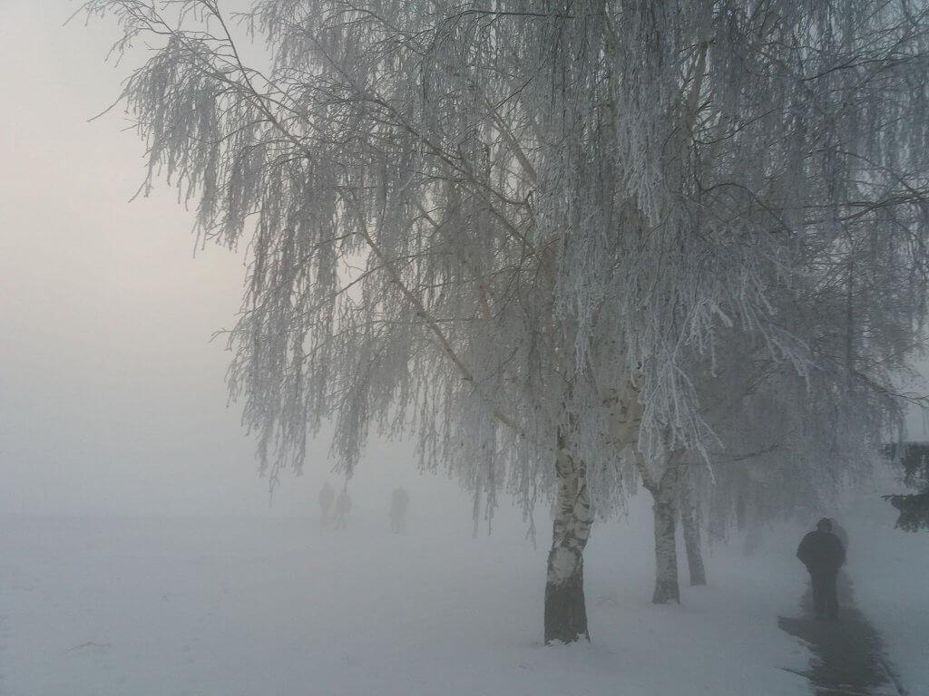 Ledena magla u Zrenjaninu - 1. mart 2018