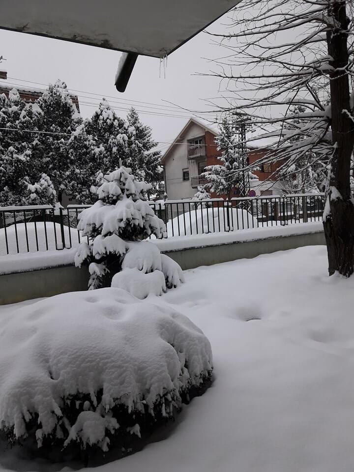 Novi Sad ispod 20cm snega (3)