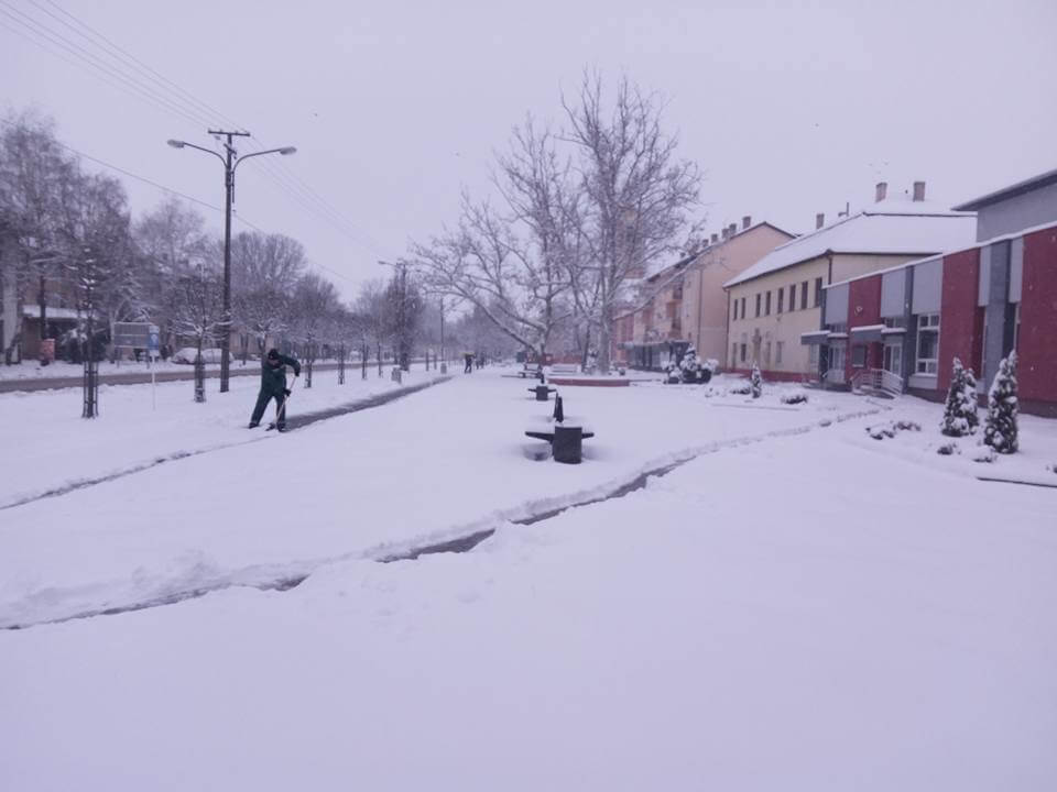 Prolećni sneg u Žitištu (2)