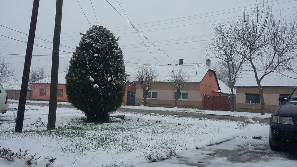 Sneg u Bečeju - 19. mart 2018