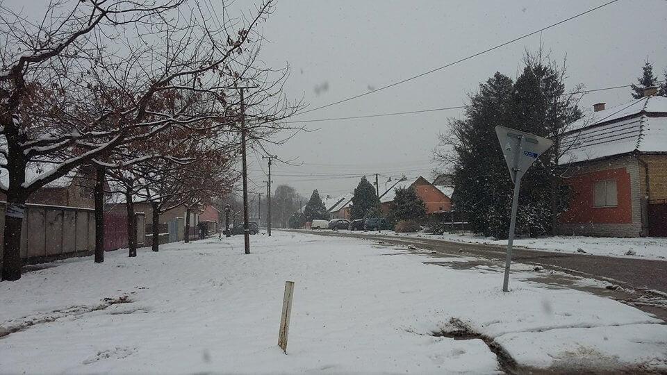 Sneg u Bečeju (2) - 19. mart 2018
