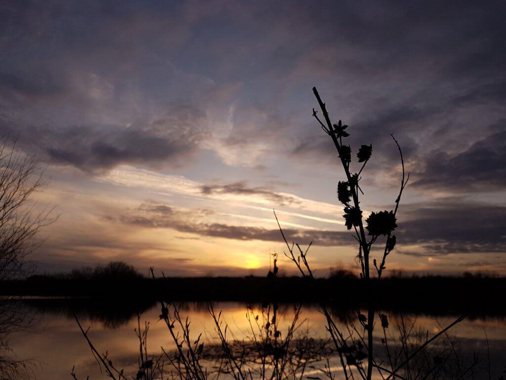 Zalazak sunca kod Tomaševca (2) - 11. mart 2018