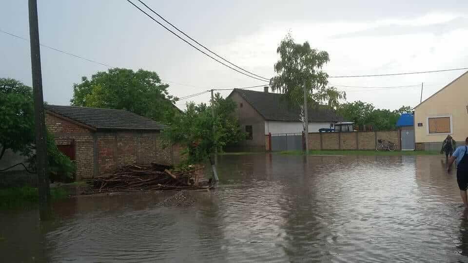 Sivac pod vodom - 10. maj 2018