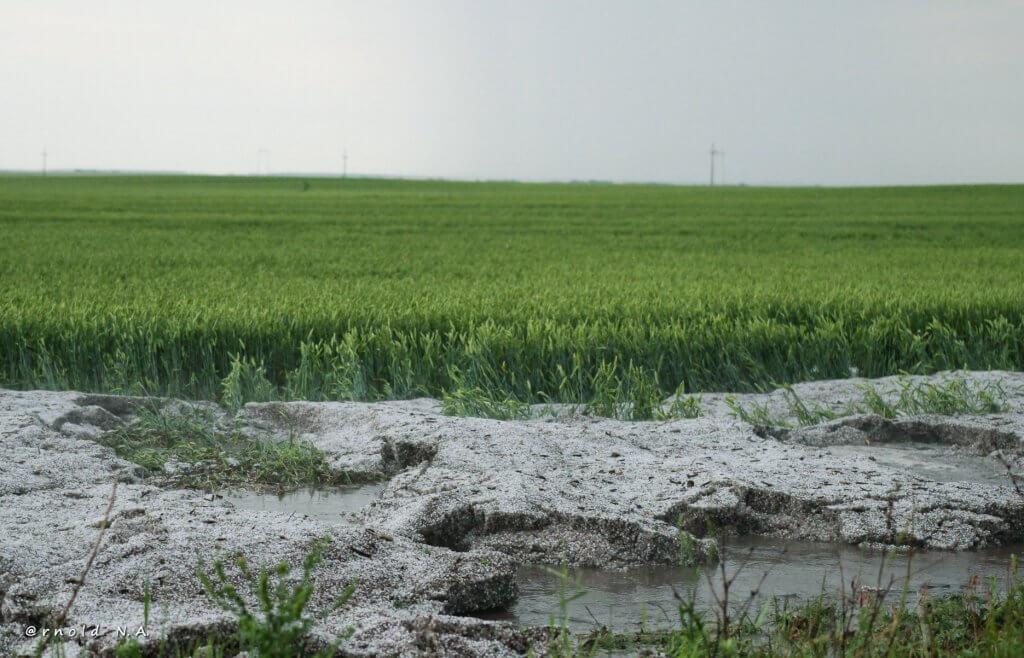 Talog leda u neposrednoj okolini Gornjeg Brega - 23. maj