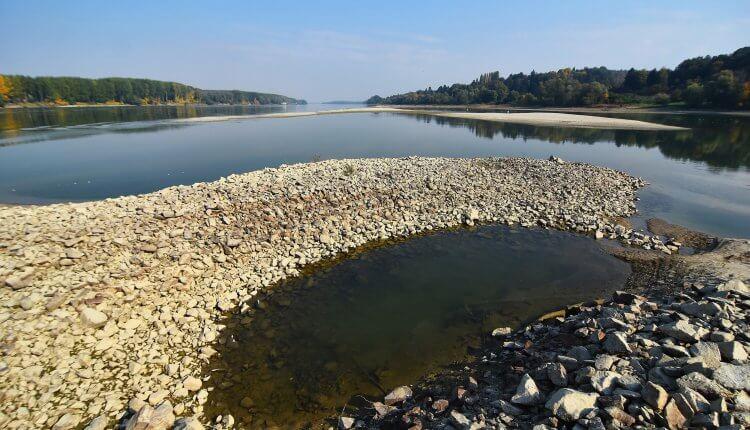 Dunav kod Banoštora okolina Novog Sada 2 (oktobar 2018)