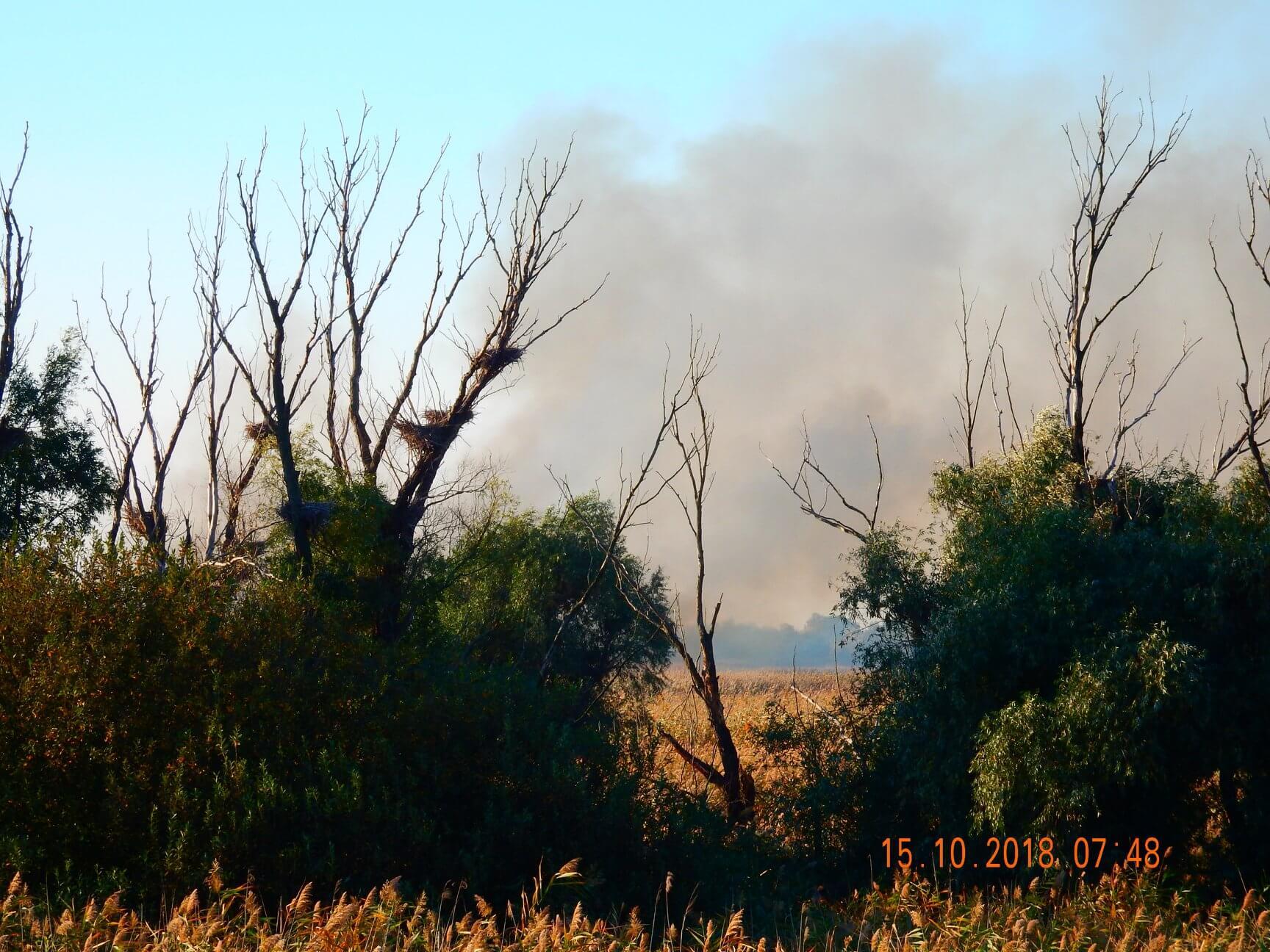 Gori područje rezervata Carska Bara