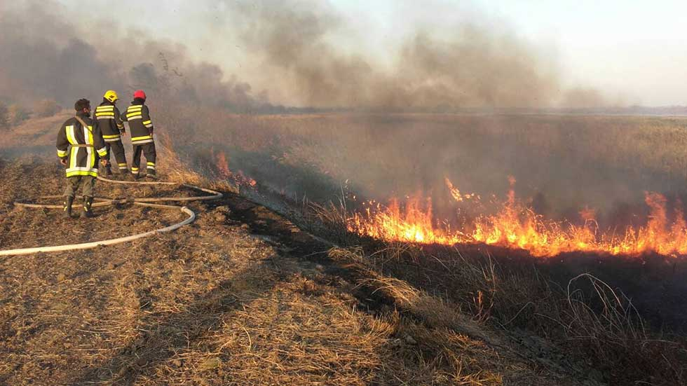 Jučerašnji požar na Carskoj Bari (3)