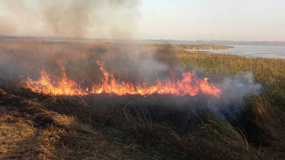 Jučerašnji požar na Carskoj Bari (5)