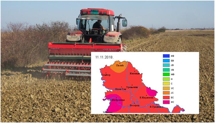 Setva pšenice i suša