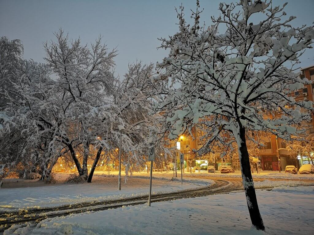 Novi Sad rano jutros 2 - 15. decembar (Foto: Dragan Acan)