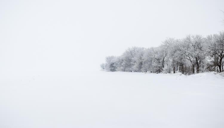 Vojvodina pod snegom zimski motivi (Foto: Daliborka Popov)