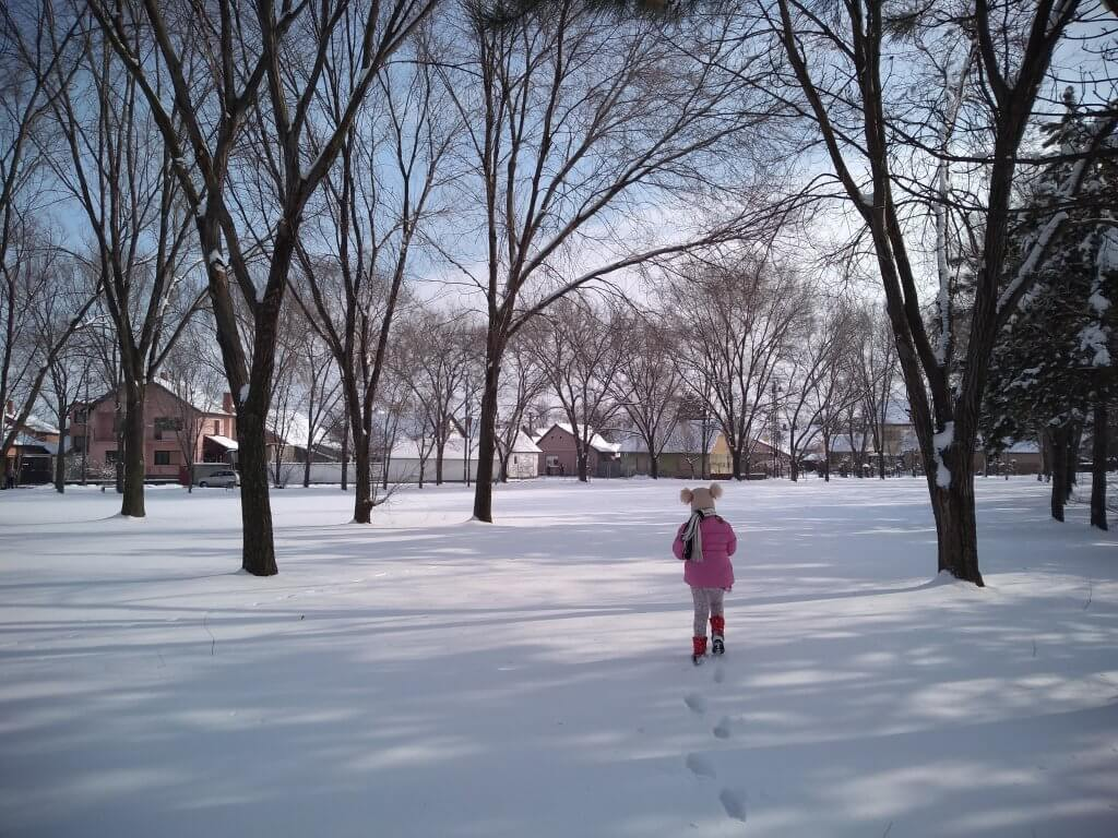 Sneg je osvojio i Vrbas