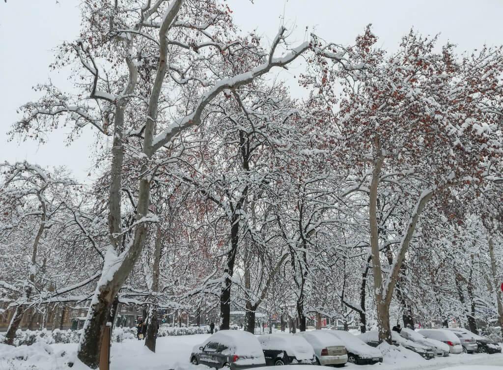 Zimski ambijent u Novom Sadu