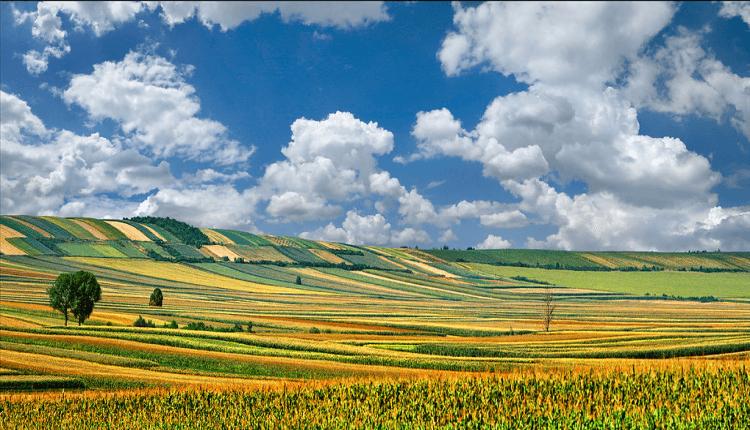 Proleće u Vojvodini