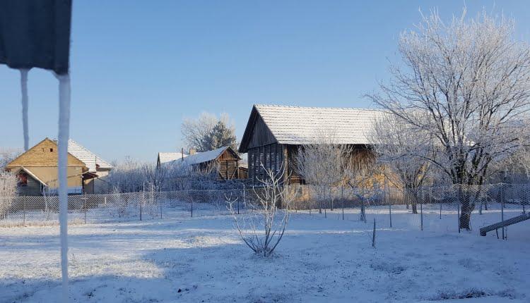 Ledeno jutro u Temerinu (Foto: Varga Zoltan)